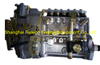 BP20J6Y 612600082288Y LONGBENG Fuel injection pump for Weichai WD12C300-15