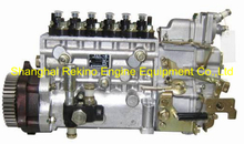 BP22E6 612630030236 Longbeng fuel injection pump for Weichai WP12