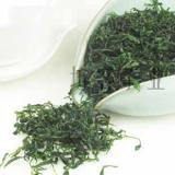 Small-leaf bitter tea