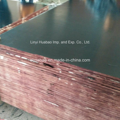 Imported Film Film Faced Plywood