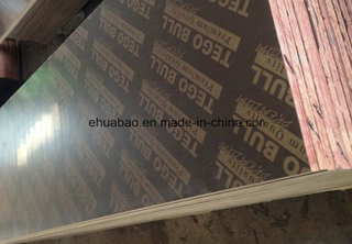 Premium Tego Film Faced Plywood Combined Core Phenolic Glue