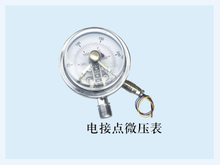 PG-003 Electric contact low pressure gauge with bottom connection