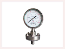 PG-017 Diaphragm Chemical Seal Pressure Gauge