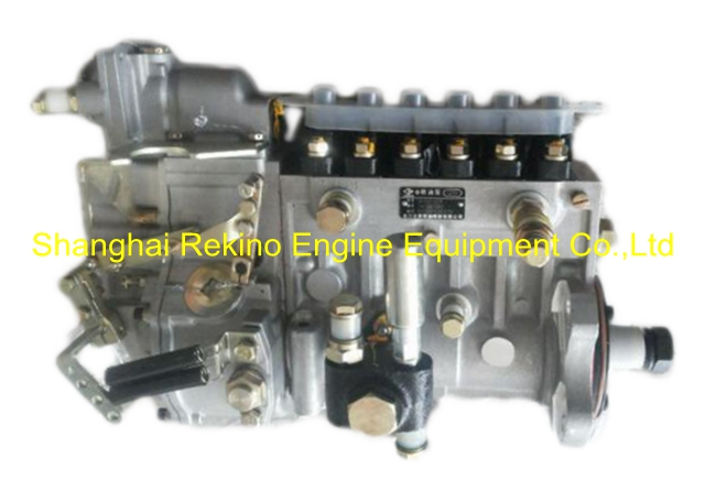 BP20074 612600083287 LONGBENG fuel injection pump for Weichai WD12C375-21
