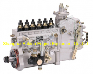 BP2249A T8200-1111100A-C27 Longbeng fuel injection pump for Yuchai YC6T