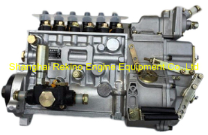 BP12010 13054029 Longbeng fuel injection pump for Weichai WP6C163-23