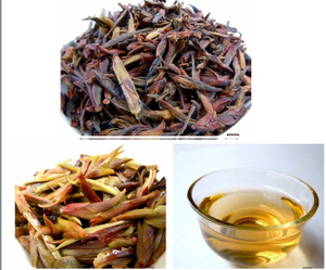 Wild Purple Bud Tea