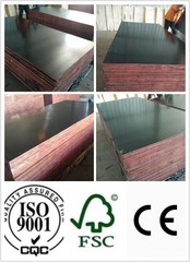 Black Film Faced Plywood 18*1220*2440mm First Grade