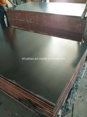 21*1250*2500 Black Film Faced Plywood for Concrete