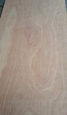 Pencil Cedar Plywood BB/CC Grade Poplar Core