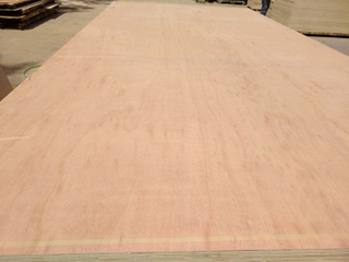 16.5*1220*2440mm Okouman Plywood (HBi60)