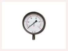 PG-029 Stainless Steel Pressure Gauge with bottom connection