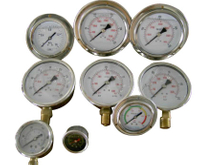 SG4010 Liquid Filled Gauge & Pressure Gauge and Thermowell and Siphon and Needle Valve