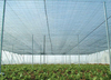 Sunshade net