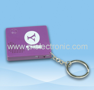 Sound keychain with logo