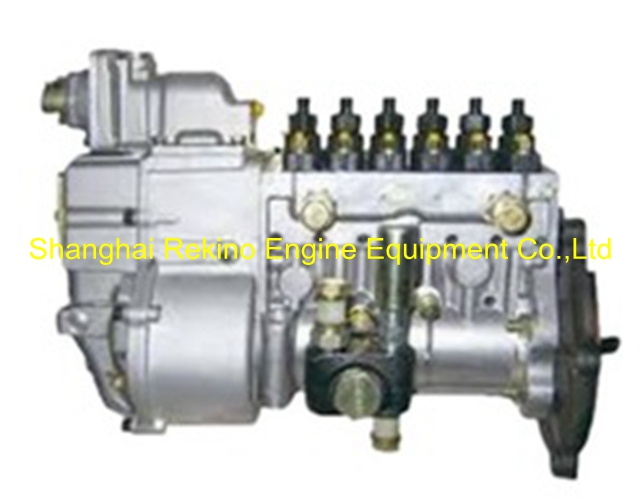 BP20012 612601080753 LONGBENG Fuel injection pump for Weichai WP10 generator