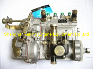 13023251 10401014063 BYC fuel injection pump for Weichai TD226B-4D (WP4D)