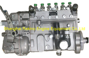 13020436 10402376154 BYC fuel injection pump for Weichai TBD226B-6 (WP6D)