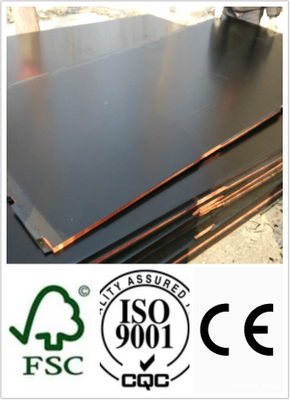 1250*2500mm Size Black Film Faced Plywood First Grade