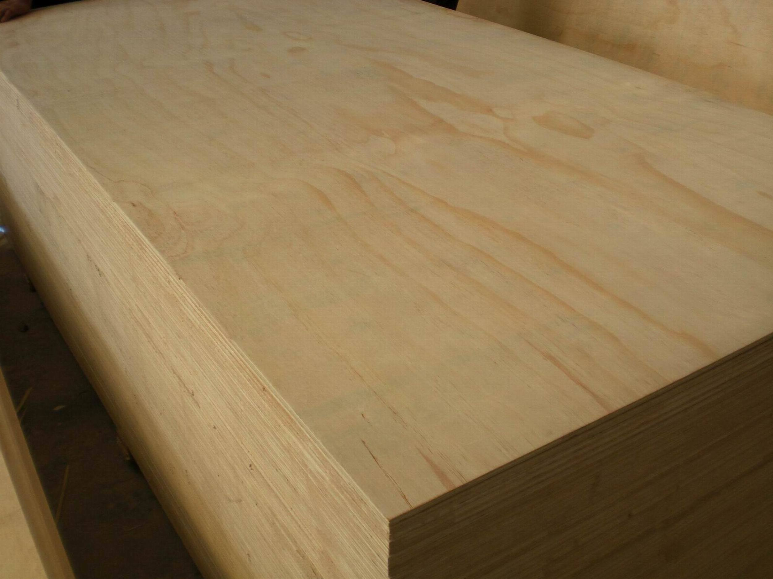 Decorative Commercial Plywood for Furniture E1 Glue