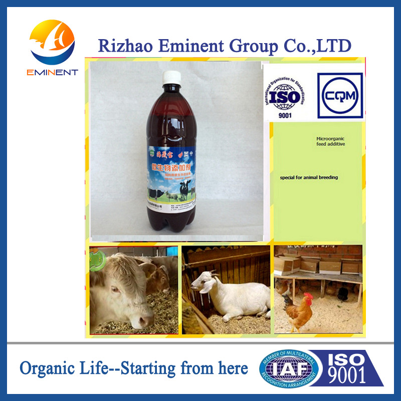 Seaweed organic Microbial Agent for animal breeding