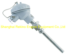 WRN-280 JNDZ thermocouple