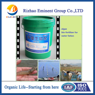 seaweed bio fertilizer used for aquaculture fatten water