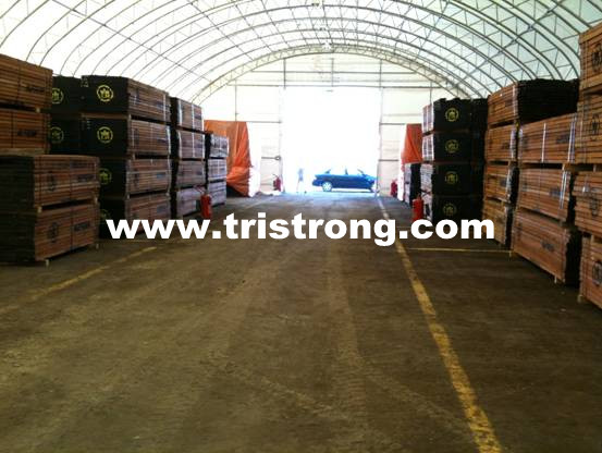 Super Large Temporary Workshop, Super Strong Trussed Frame Warehouse (TSU-49115)