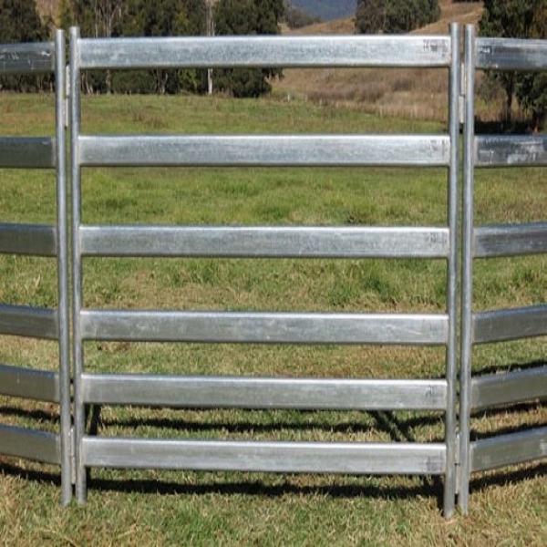 2.1m Viehbestand-Schaf-Yard-Zaun-bewegliches Ziege-Hürde-Panel ...