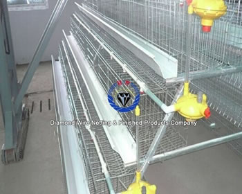 Hot supply 96hens Hot-dipped Galvanized Chicken Cage, Egg layer chicken cage in china