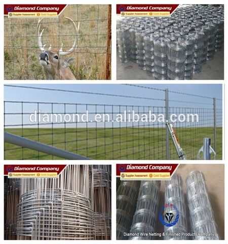 High quality , long using time,low price Cattle Fence /Grassland Fence/Field Fence