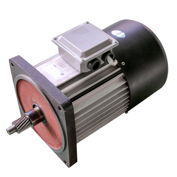Electric Hoist Motor for EOT Crane Hoist Lifting