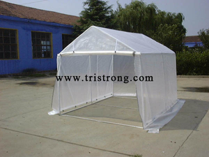 Portable Small Carport, Greenhouse (TSU-250A)
