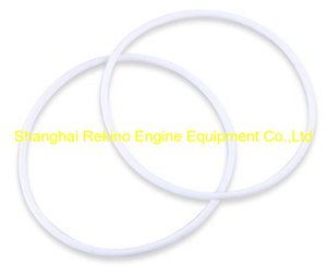 C62.10.02.0008 O ring Weichai engine parts CW6200 CW8200 CW200