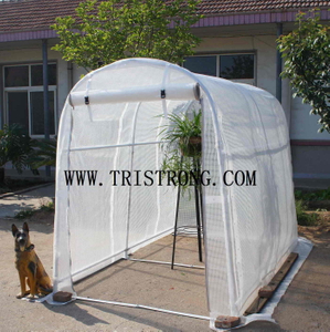Flower House, Hothouse, Garden Tool, Garden Shed, Greenhouse (TSU-162G)