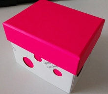 Watch box(ys515)