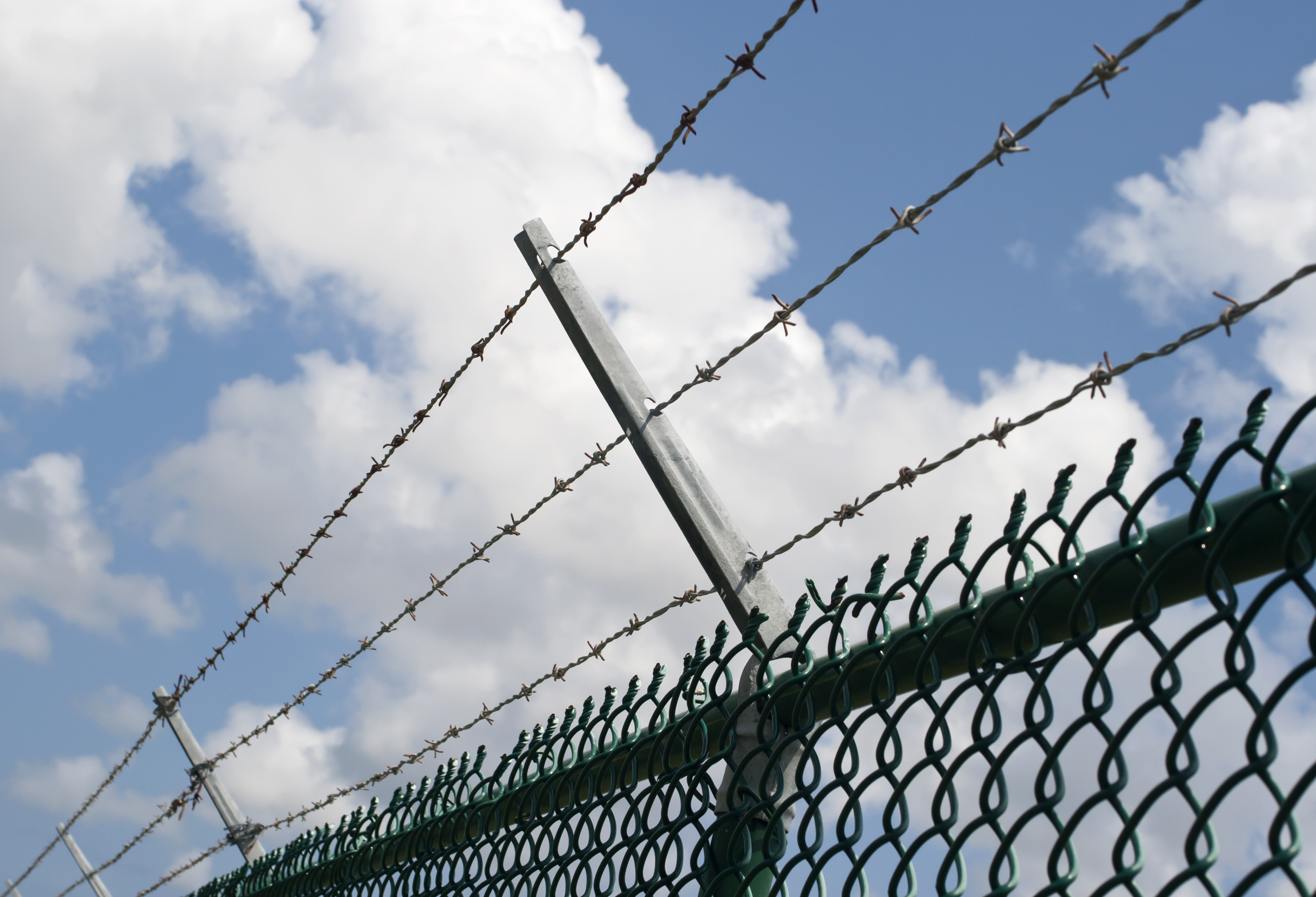 Contemporary Barb Wire Fence Scary Crest - Wiring Diagram Ideas ...