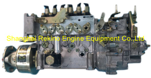 22000-9950 108622-3663A 108062-3421 ZEXEL HINO fuel injection pump