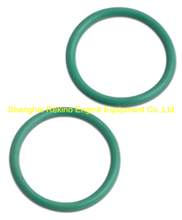 N21.1235 fuel pipe seal ring Ningdong engine parts for N210 N6210 N8210