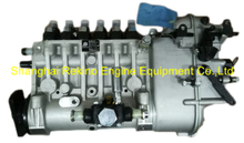BP6105B 6170ZC.31.00 Longbeng Weichai fuel injection pump for X6170