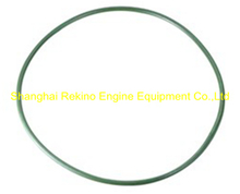 230.112.03 O ring Guangchai marine engine parts 230