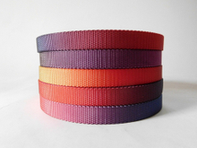 18mm multicolour nylon webbing for dog belt
