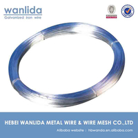 Electro Galvanized Low Carbon Steel Wire search all products