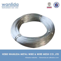 Anping factory galvanized tie wire 22 gauge ( BV Certification )
