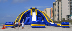 Inflatable Biggest Water Hippo Slide Beach Hippo Slide