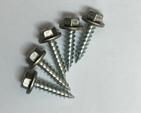 Stainless Steel Cap Self-Tapping Screw