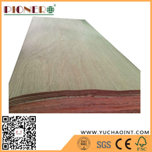 Natural Wood Plb Rotary Cut Veneers