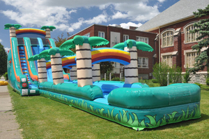 Beach Inflatable Giant Hippo Slide for Sale Inflatable Water Slide