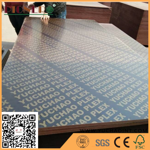 Waterproof Black Film Faced Construction Plywood