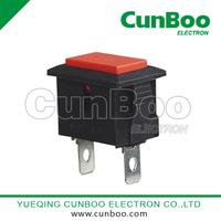 PBS-101 push on button switch for treater